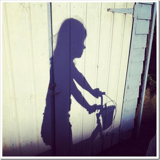 shadowtastic